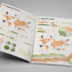 20+ BEST PSD INFOGRAPHIC TEMPLATES FOR FREE